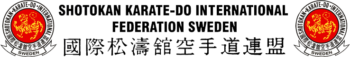 karate ski logga